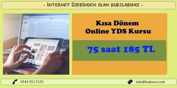 Kısa Dönem YDS Online Kurs